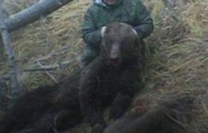 В Башкирии охотник из Челябинской области застрелил медведицу с медвежонком