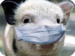 Свиной грипп в Башкирии болеют 54 человека