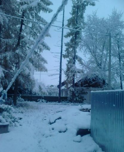 sneg-v-oktyabre-v-bashkirii_3