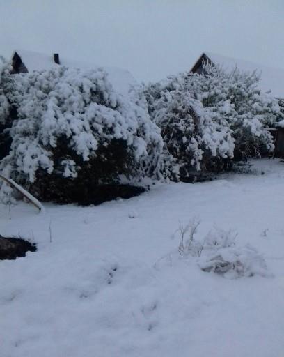 sneg-v-oktyabre-v-bashkirii_5